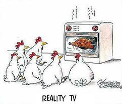 chicken reality TV